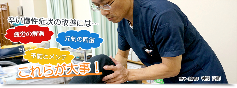 訪問専門 整体院/鍼灸・マッサージ治療院 大阪府寝屋川市の整体・鍼灸の治療院 肩こり・腰痛・五十肩なら当院までお問い合わせください。